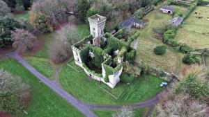 Aerial Photo of Castle